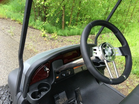 The custom dash and steering wheel/column always dress up a cart!