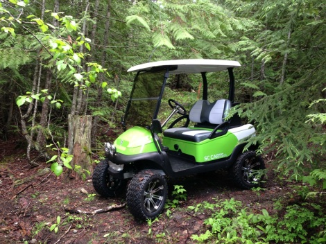 "This lifted Precedent was one of our all time favorites. It was built with the intention of being a show cart for SC Carts. That changed after only two short days of it's completion. Now it lives at La Casa Lake Resort in Fintry BC. The new owners named it ""Herby"""