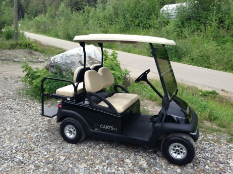 Another clean SC Carts Club Car Precedent ready for it's new home.