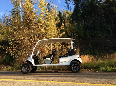 Here is this amazing stretch Club Car Precedent, all finished and looking awesome with the fall colors in the background.