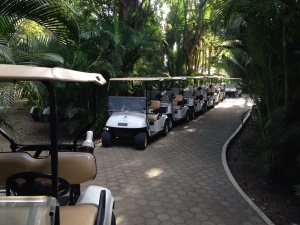 All lined up and no place to go. The carts are put out like this each morning, but only a couple of them get used...this is truly a golfers dream course.